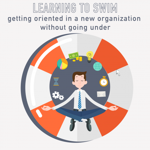 023 – Learning to Swim:  Getting oriented in a new organization without going under