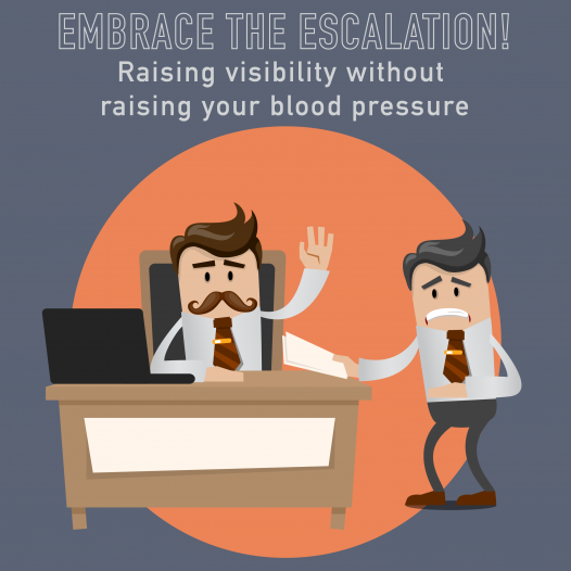 028 – Embracing the Escalation: raising visibility without raising your blood pressure